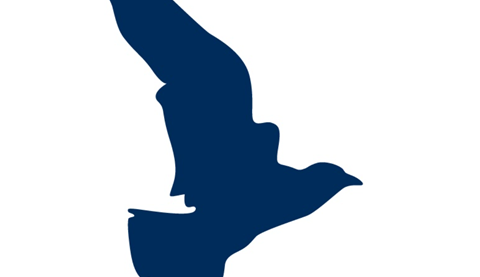 Skylar Media Group Logo
