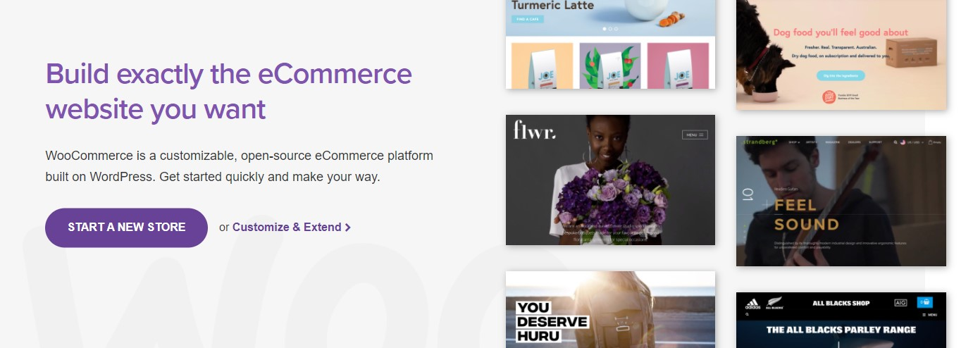 woocommerce for ecommerce websites